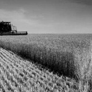 Põllumajandustooted